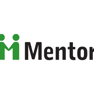 Mentor partnership