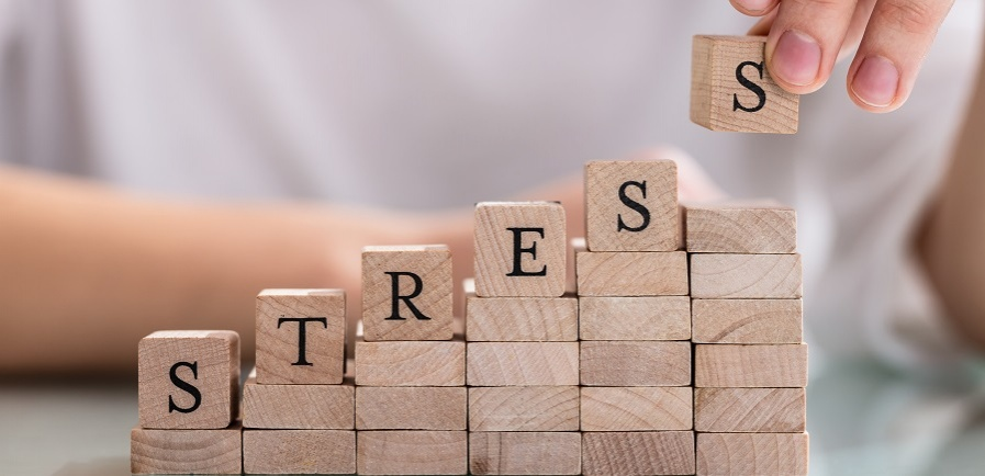 What are the main causes of work-related stress?